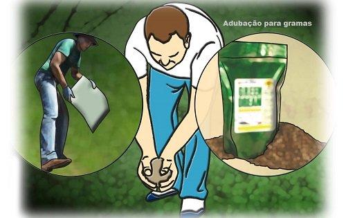 Adubo para grama esmeralda