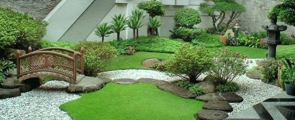 grama coreana (grama japonesa)